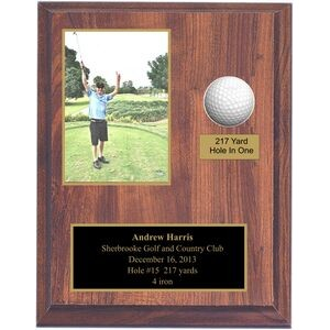 Hole In 1 Plaque